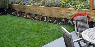 Entretien paysagiste pelouse