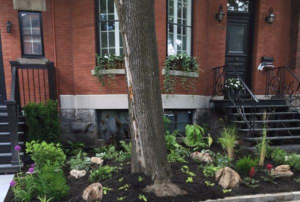 Planting-paysagiste-fleurs-montreal